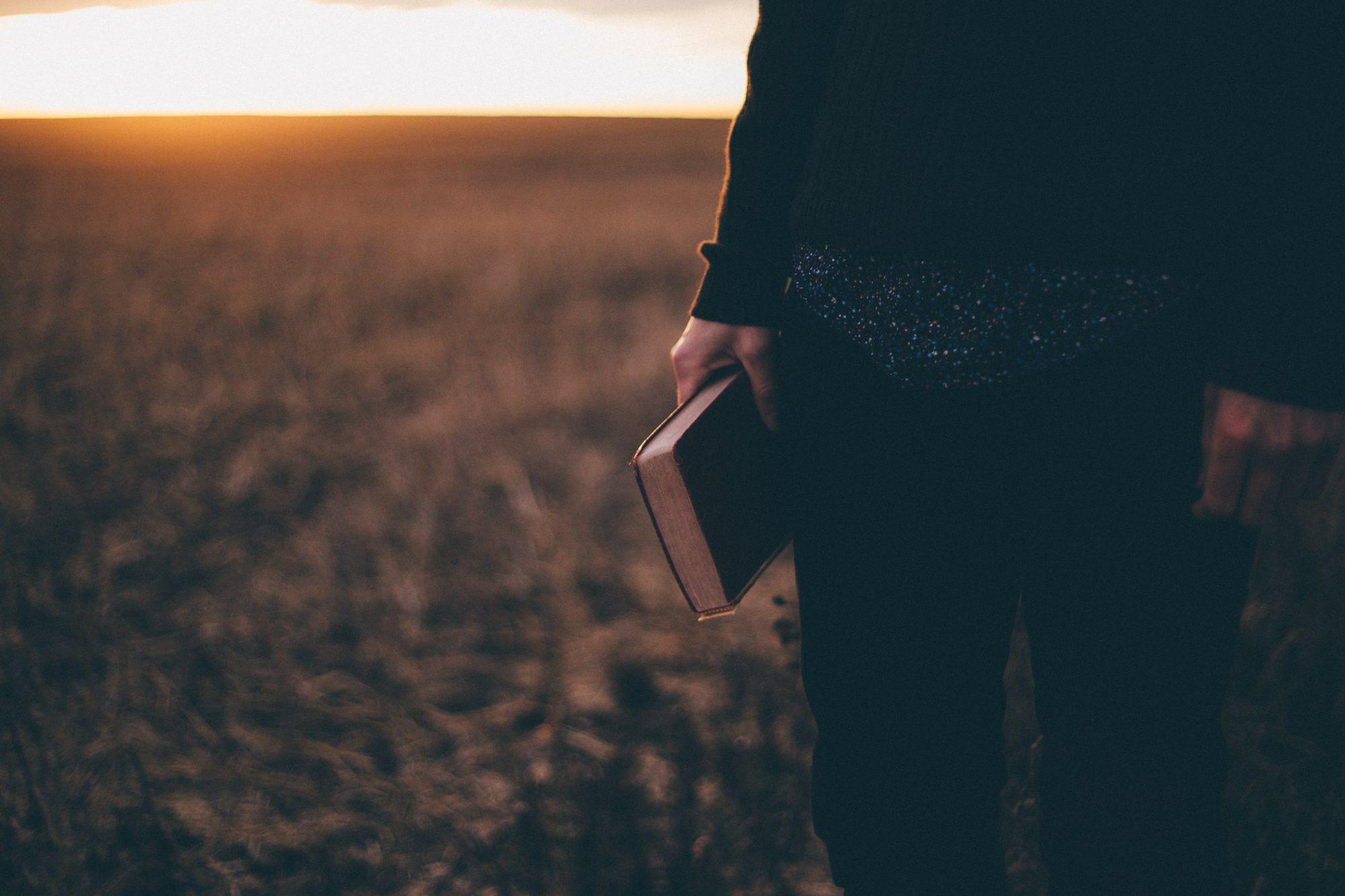 Das alte und das neue Evangelium