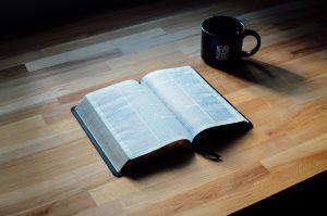 """<span class=""""entry-title-primary"""">Das Evangelium in der ganzen Schrift entdecken</span> <span class=""""entry-subtitle"""">Von Donald S. Whitney</span>"""