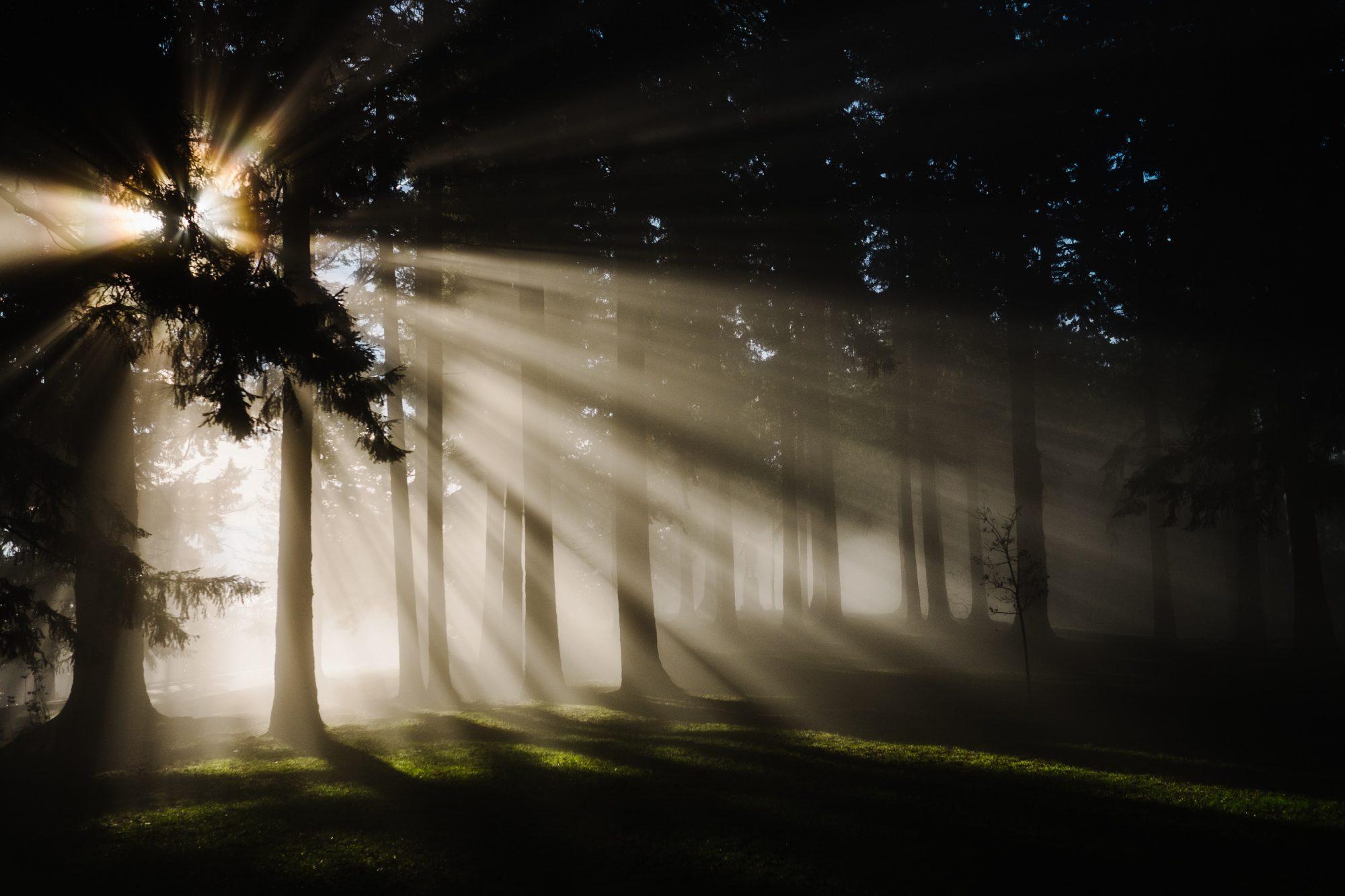 10 Gründe zur Hoffnung (wenn alles hoffnungslos erscheint)